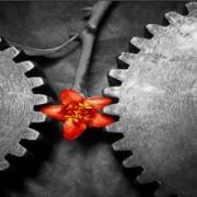 سنت یا مدرنیته - مهندسی صنایع - Industrial Engineering - علی شهابی - Ali Shahabi - دانشکده مهندسی صنایع
